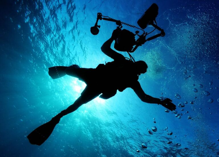 A diver holding a camera swimming in the sea as seen from below. The sun is behind him.